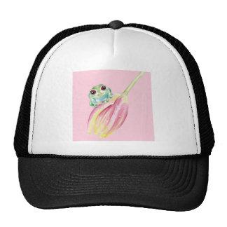 Cute Frog On Pink Cap
