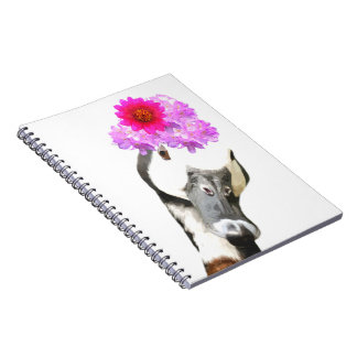 Cute funny adorable farm animal goose girly notebooks