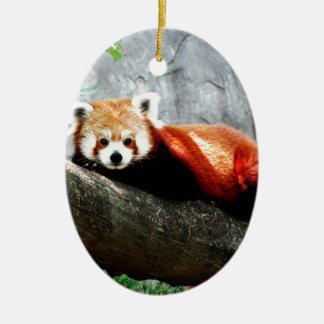 cute funny animal red panda ceramic ornament