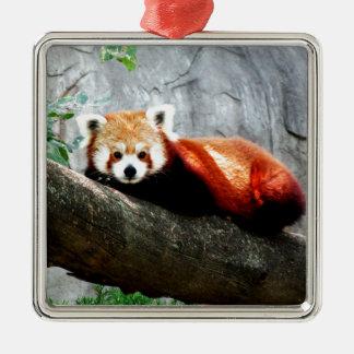 cute funny animal red panda metal ornament
