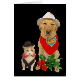 Cute, Funny Cat & Dog/Lab Valentine Card