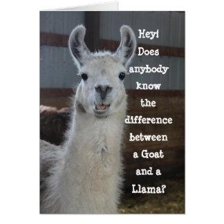 Cute Funny Llama Humor Birthday Card