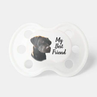 Cute Funny Pet Dog Chocolate Labrador Dummy