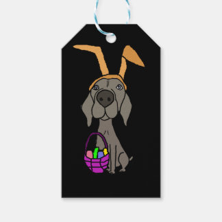 Cute Funny Weimaraner with Bunny Ears