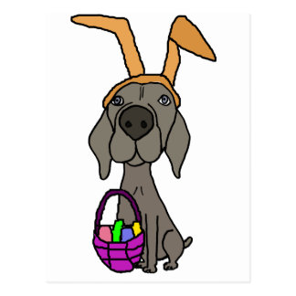 Cute Funny Weimaraner with Bunny Ears Postcard