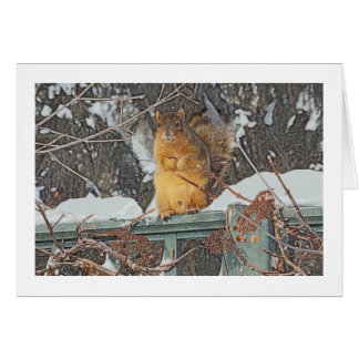 """CUTE FURRY SQUIRREL ON SNOWY FENCE""/ DIG.MANIP. CARD"