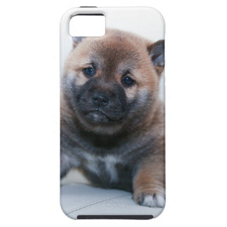 Cute Fuzzy Puppy Dog iPhone 5 Cases