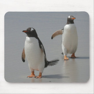Cute Gentoo Penguins Computer Mousepad