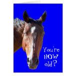 Cute Getting Older Birthday Horse Western
