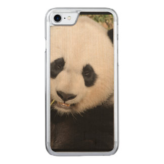 Cute Giant Panda Bear Carved iPhone 8/7 Case