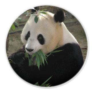 Cute giant panda bear ceramic knob