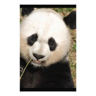Cute Giant Panda Bear Personalised Stationery