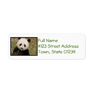 Cute Giant Panda Bear Return Address Label