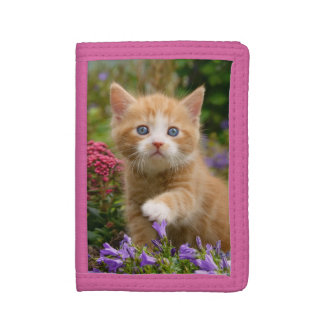 Cute Ginger Cat Kitten Face Baby Pet Animal Photo Tri-fold Wallet