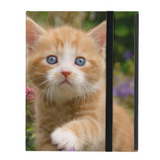 Cute Ginger Cat Kitten Garden, protective hardcase iPad Covers