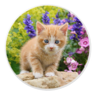 Cute Ginger Cat Kitten in Flowers - Decorative Ceramic Knob