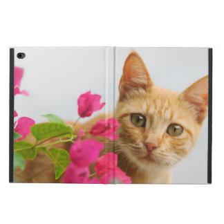 Cute Ginger Cat Kitten Watching Portrait Hardcase