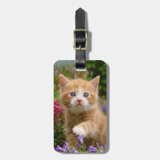 Cute ginger kitten in a garden bag tag