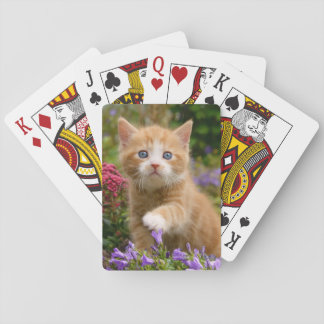 Cute ginger kitten in a garden playing cards