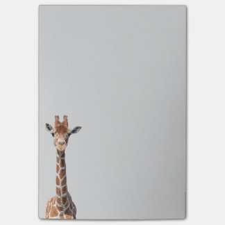 Cute giraffe face post-it notes