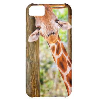 Cute Giraffe iPhone 5C Case