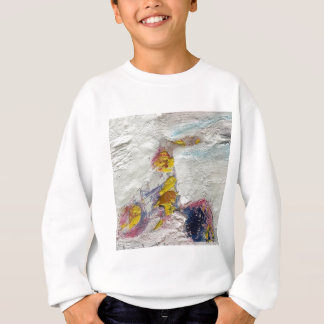 Cute Girl on a Bike original artwork Sweatshirt