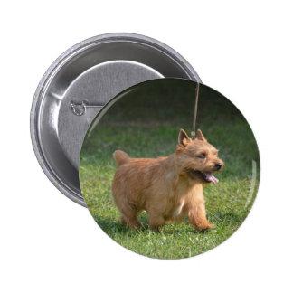 Cute Glen of Imaal Terrier Buttons