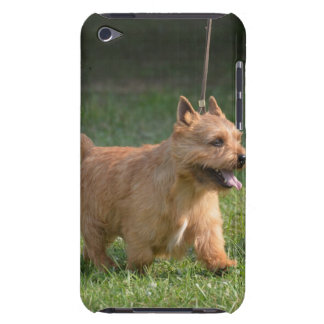 Cute Glen of Imaal Terrier Barely There iPod Cover