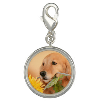 Cute Golden Retriever Dog With Yellow Flower