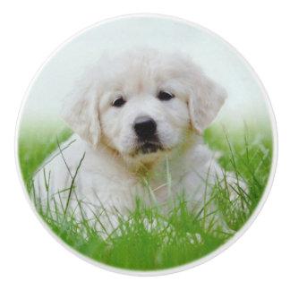 Cute Golden Retriever Puppy Dog Green Grass Ceramic Knob