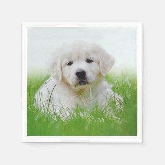 Cute Golden Retriever Puppy Dog Green Grass Paper Napkin