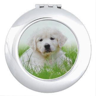 Cute Golden Retriever Puppy Dog Green Grass Vanity Mirror