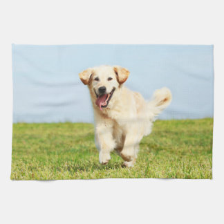 Cute Golden Retriever Puppy Running on Grass Tea Towel