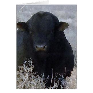 Cute Graduation Congratulations Ranch Farm Bull Card