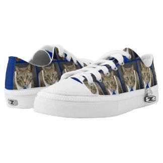 Cute green-eyed brown tabby cat wearing a blue tie low tops