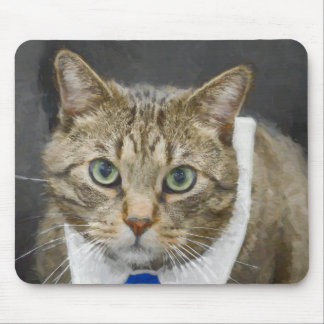 Cute green-eyed brown tabby cat wearing a blue tie mouse pad
