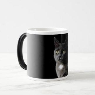 Cute grey cat magic mug