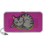 Cute grey cat sleeping laptop speaker
