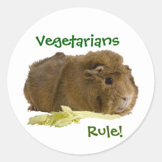 Cute Guinea Pig Eating A Celery Stalk Photograph Classic Round Sticker