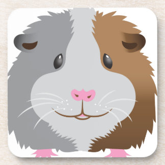 cute guinea pig face coasters