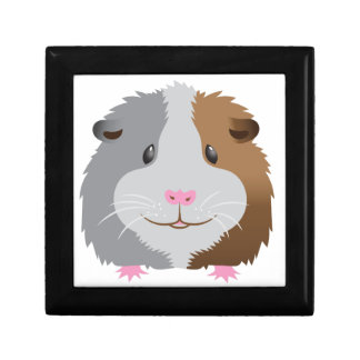 cute guinea pig face gift box