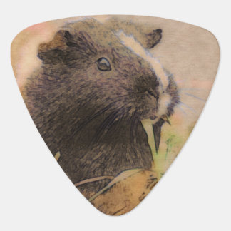 cute Guinea pig Guitar Pick