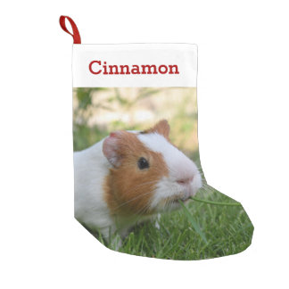 Cute Guinea Pig Pet Photo and Name Personalized Small Christmas Stocking