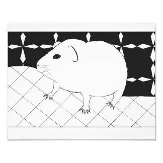 Cute guinea pig photo art
