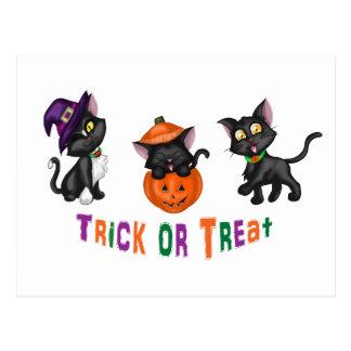 Cute Halloween Cats Postcard