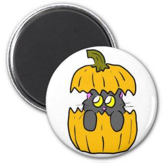 cute halloween pumpkin cat magnets