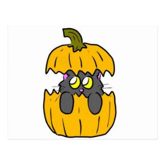 cute halloween pumpkin cat postcard