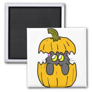 cute halloween pumpkin cat square magnet