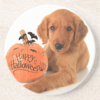 Cute Halloween Puppy With A Pumpkin Coasters