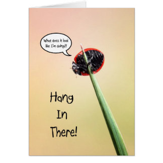 Cute Hang In There Ladybug Card